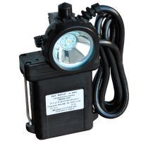 Светильник с сигнализатором Люкс-СМ.01